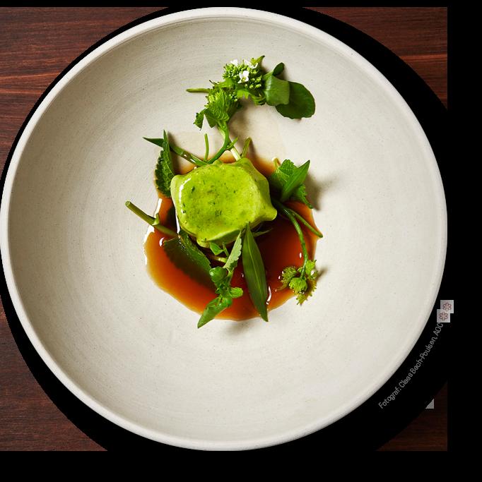 DinnerBooking Serving Michelin restaurant AOC